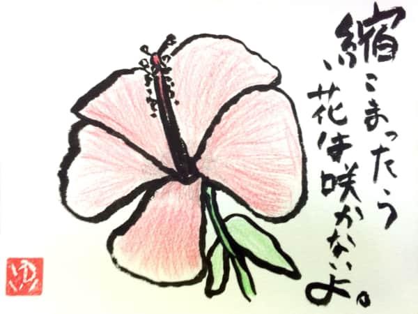 縮こまってたら、花は咲かないよ。 ハイビスカスの花