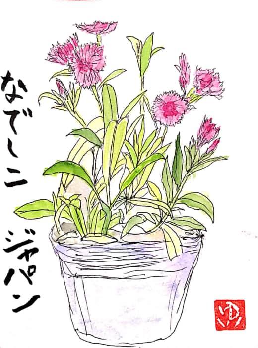 なでしこジャパン 〜なでしこの花〜