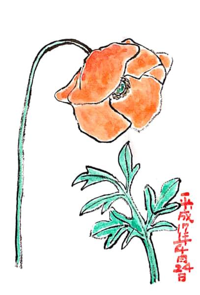 四月二十四日の花