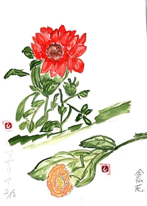 アザレアと金仙花