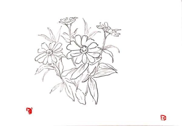 花のスケッチ