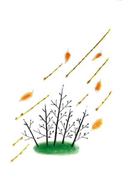 木枯らしと枯れ木 お手本