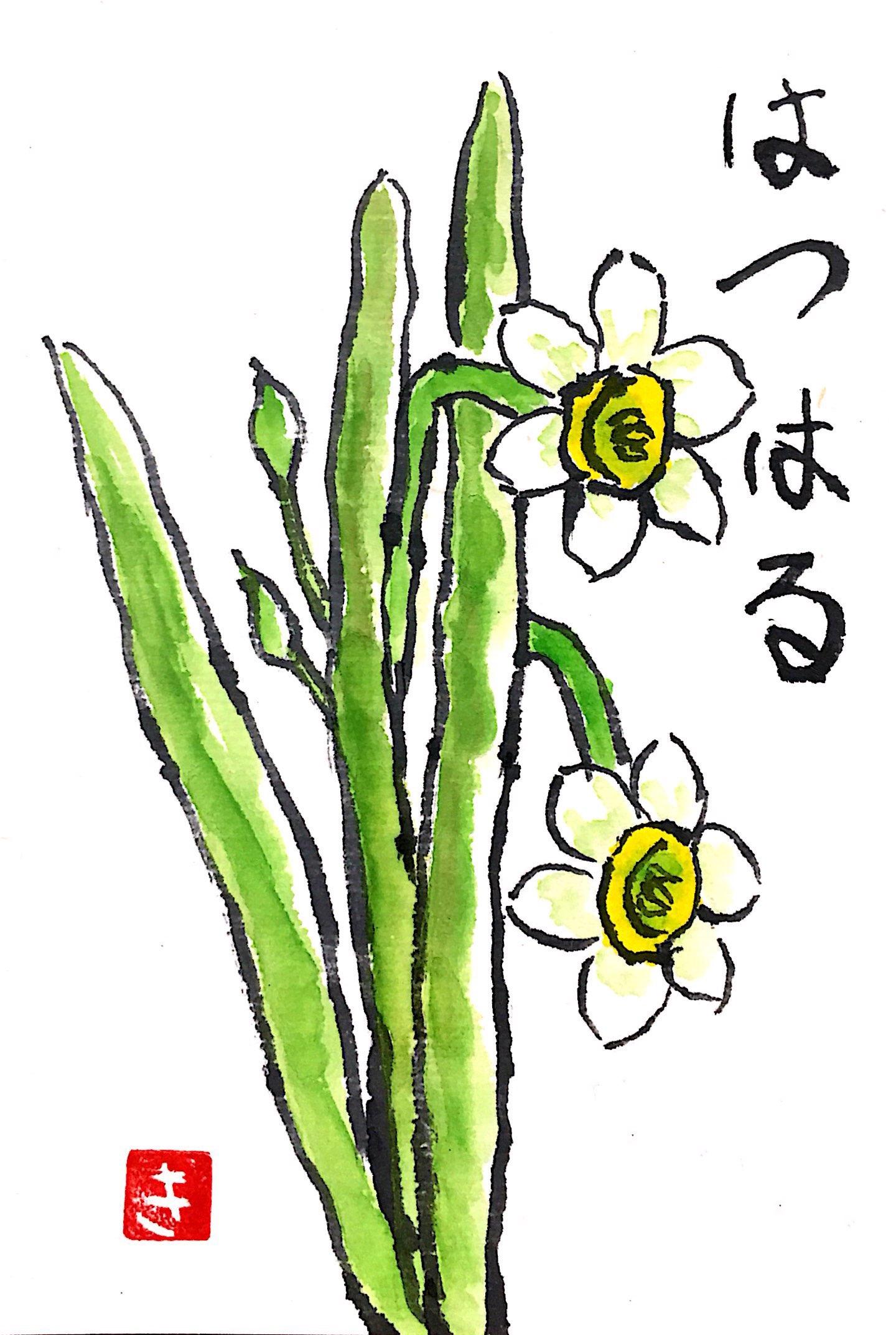 初春の白い水仙