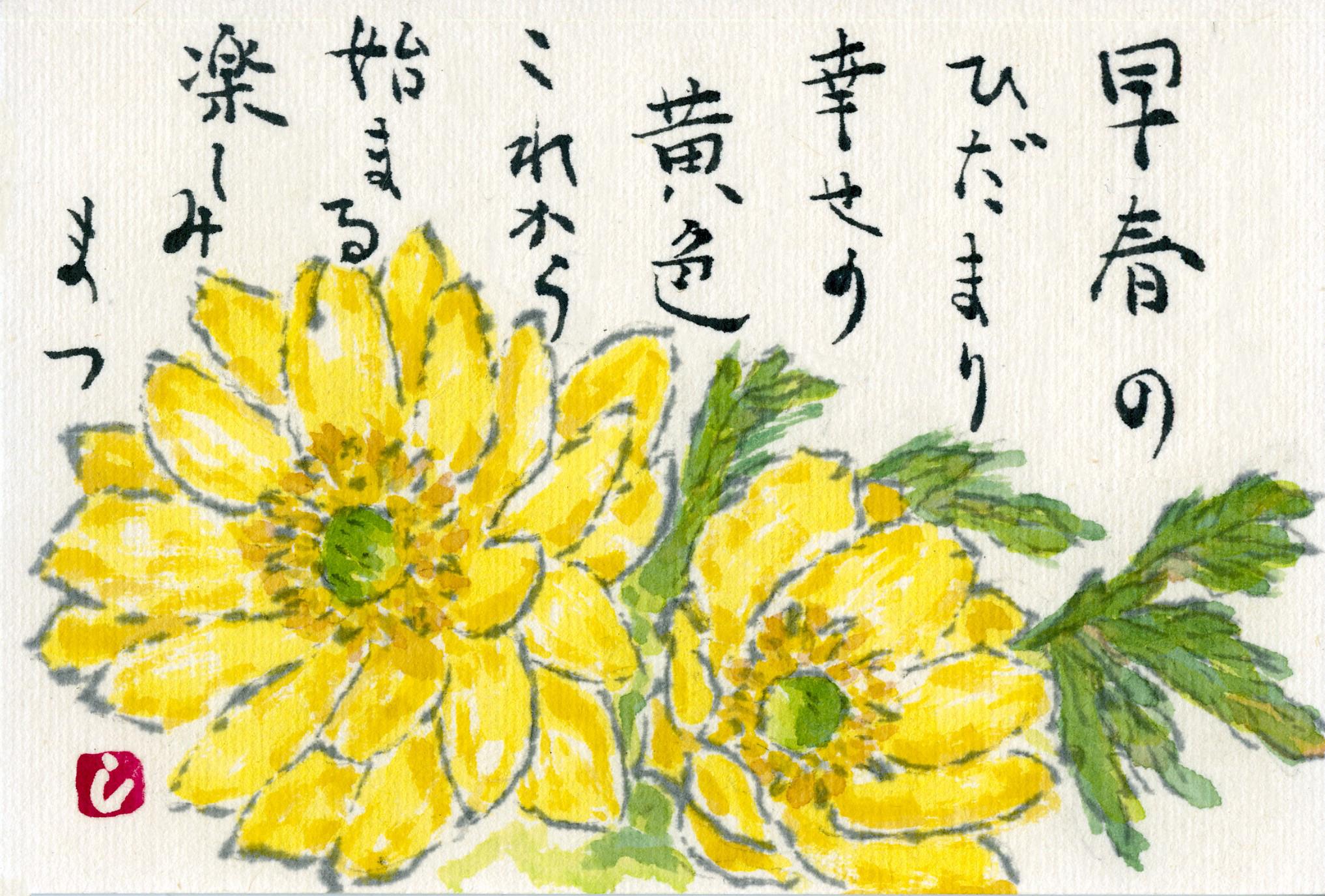 言葉 福寿草 花