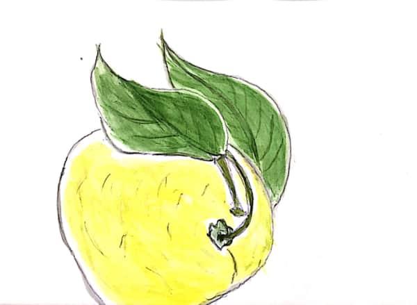 ぽつりと、柚子