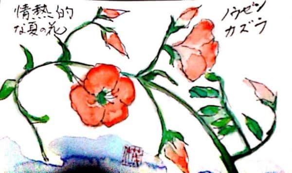 ノウゼンカズラ 情熱的な夏の花