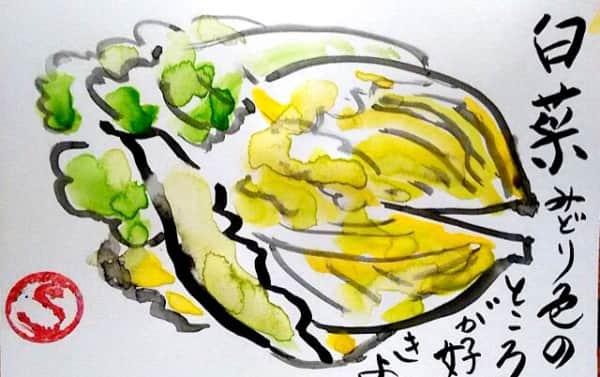 白菜 みどり色のところが好きよ