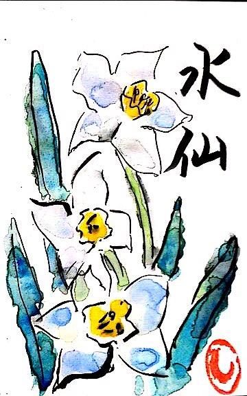 描いたばかりの水仙の絵手紙