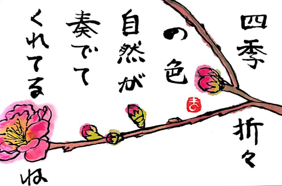 四季折々の色 自然が奏でてくれてるね