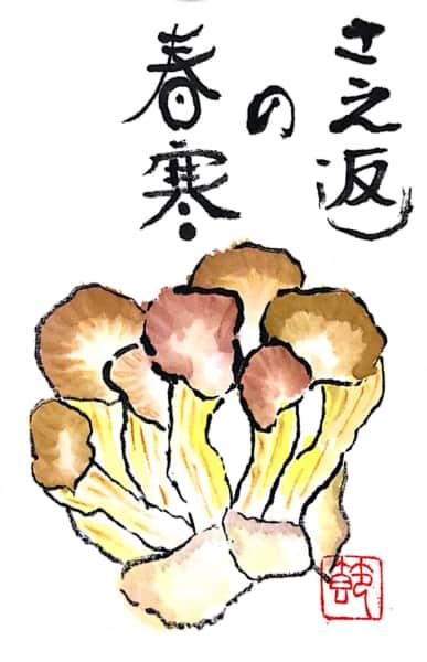 さえ返しの春寒(しゅんかん) ヒラタケ