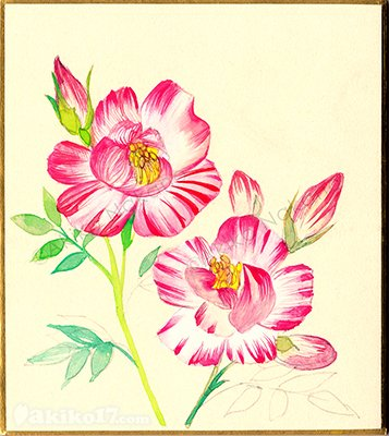 春にだけ咲く花