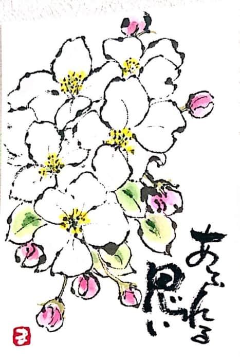 あふれる思い 桜の花