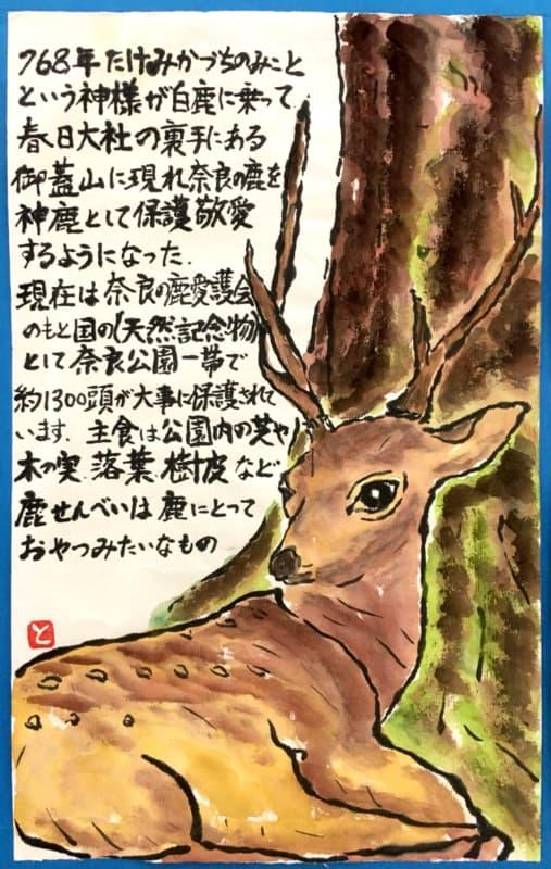 奈良の神様の化身、鹿さん