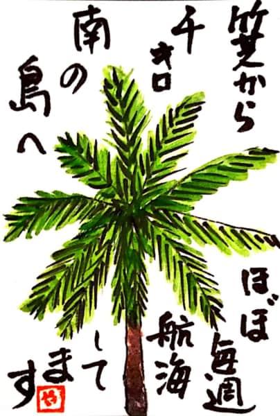 竹芝から千キロ南の島へほぼ毎週航海してます 〜椰子の木〜