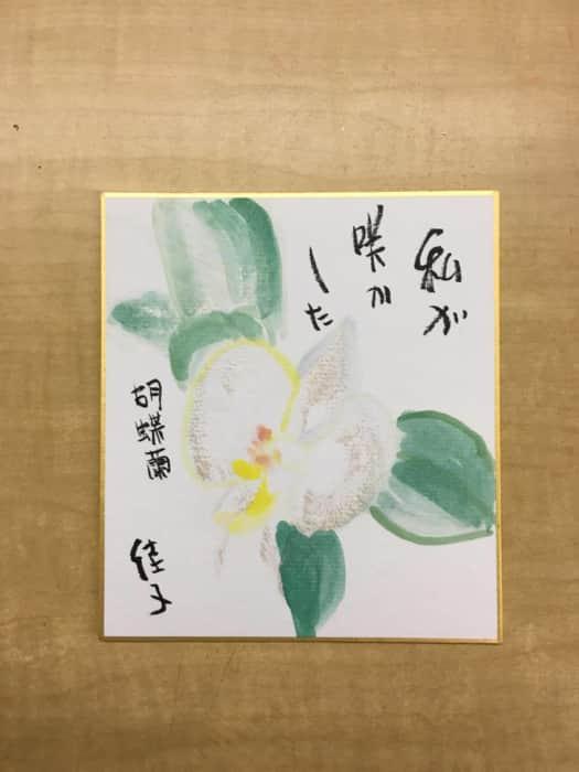私が咲かした胡蝶蘭