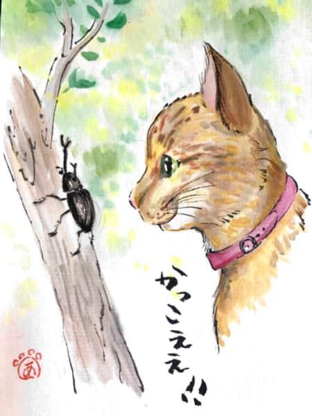 かっこええ! 猫とカブトムシ