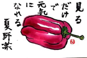 見るだけで元気になれる夏野菜