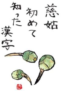 慈姑、初めて知った漢字