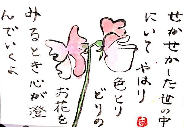 せかせかした世の中にいて、やはり色とりどりのお花をみるとき心が澄んでいくよ