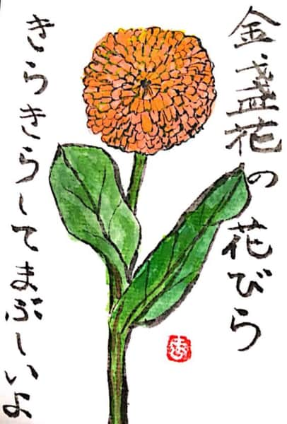 金盞花の花びら きらきらしてまぶしいよ