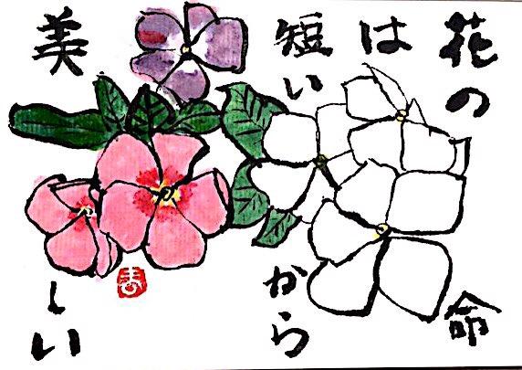 花の命は短いから美しい