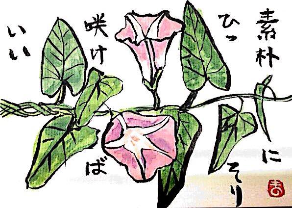 素朴にひっそり咲けばいい 〜朝顔の花〜