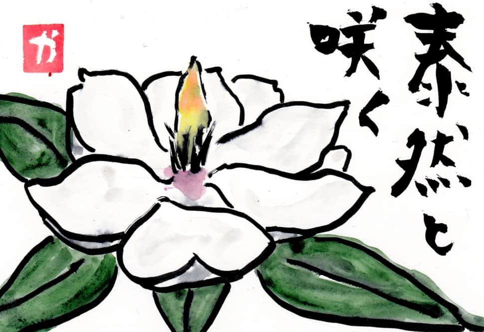 泰然と咲く花