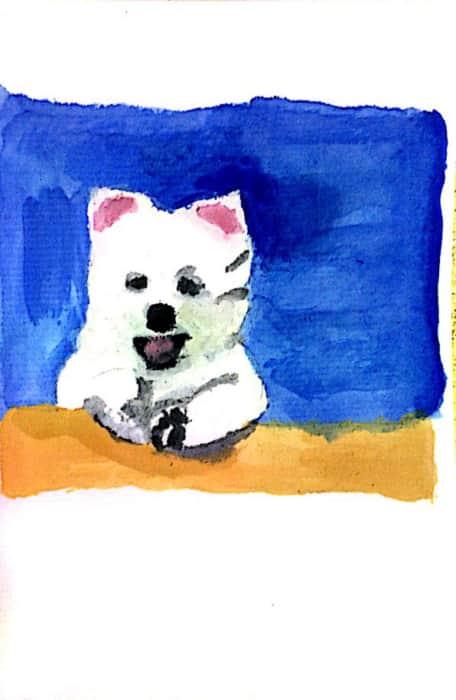 イラスト「スピッツの子犬」