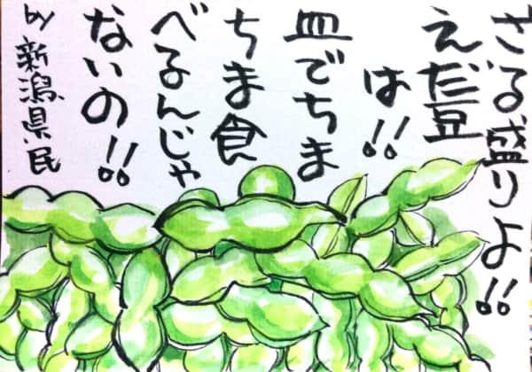 ざる盛りよ!!えだ豆は!!皿でちまちま食べるんじゃないの!! by新潟県民
