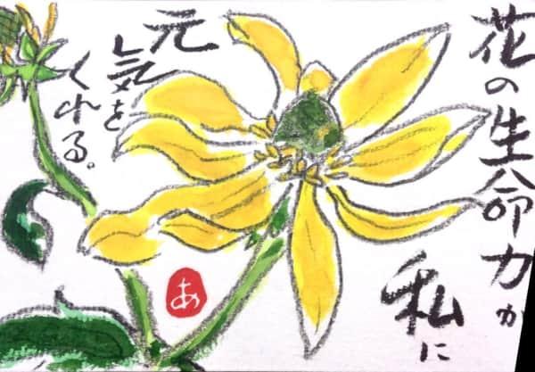 花の生命力が私に元気をくれる
