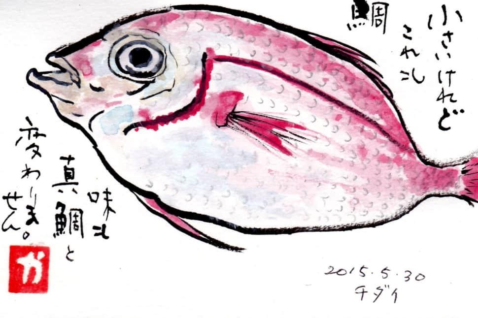 小さいけれど、これも鯛 味も真鯛と変わりません。チダイ