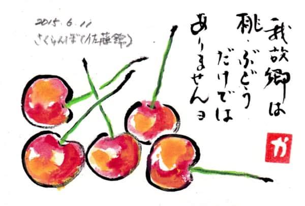我故郷は桃・ぶどうだけではありませんヨ 〜佐藤錦〜