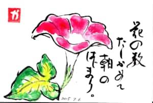 花の数たしかめて朝のはじまり。