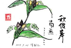 秋彼岸 南無… 〜数珠玉〜