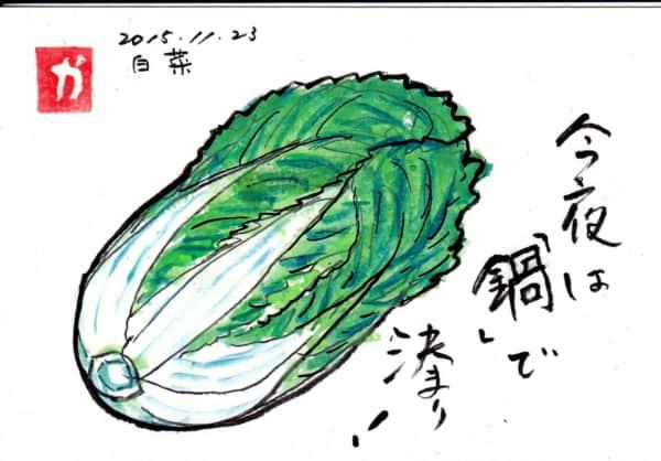 今夜は「鍋」で決まり! 〜白菜〜