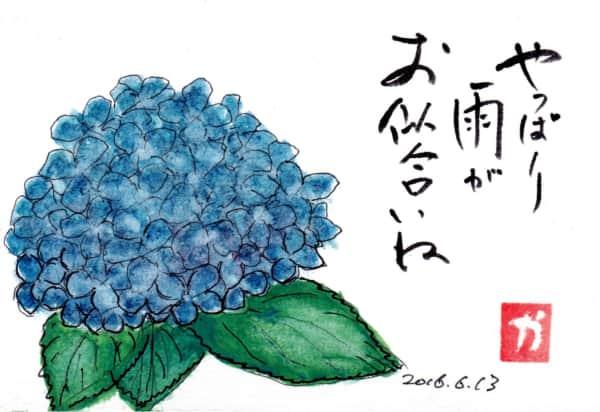 やっぱり雨がお似合いね〜紫陽花〜