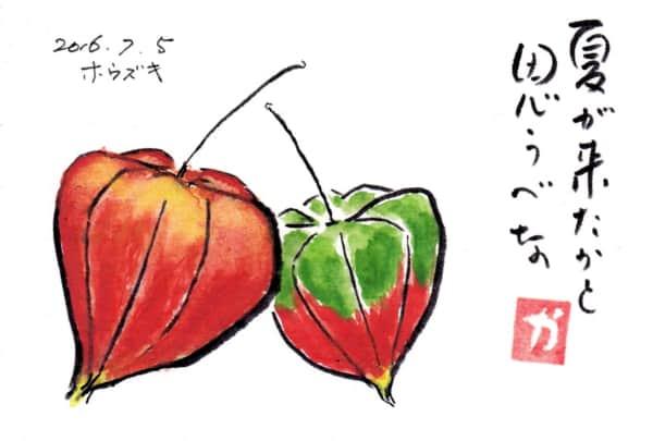 夏が来たかと思うべな〜ホオズキ〜