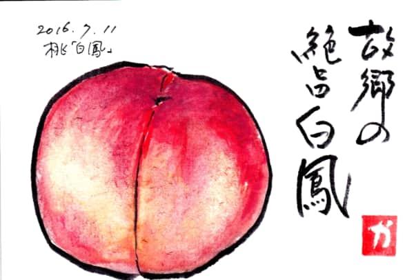 絶旨白鳳〜白鳳(桃)〜