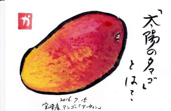 「太陽のタマゴ」とは?〜宮崎産マンゴー「アーウィン」〜