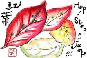 秋の紅葉の絵手紙