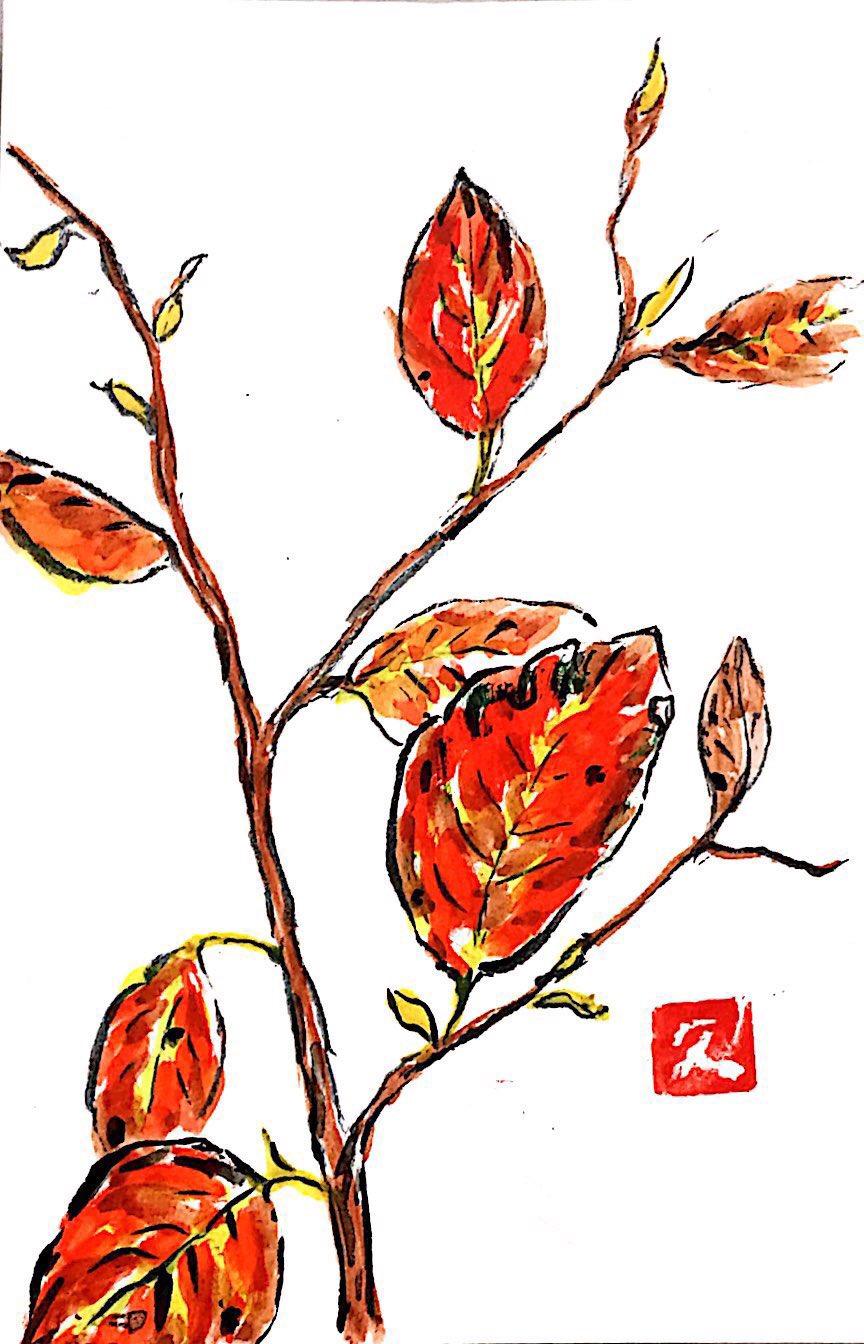 秋から冬を彩る枯れ葉