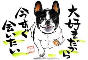 ボストンテリア犬の絵手紙