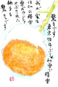 雪帽子をかぶった柚子の絵手紙