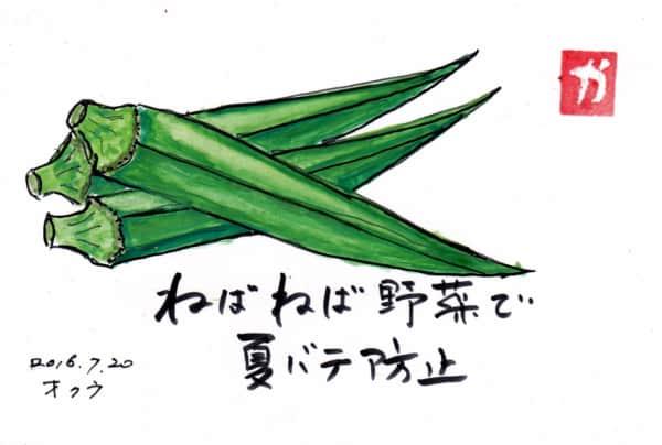 ネバネバ野菜で夏バテ防止〜オクラ〜