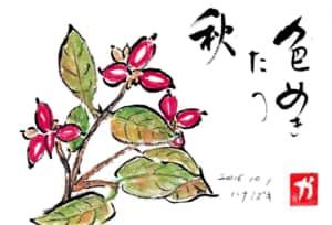 色めきたつ秋〜ハナミズキ〜
