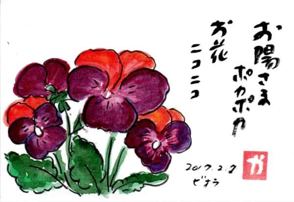 お日様ポカポカお花ニコニコ〜ビオラ〜
