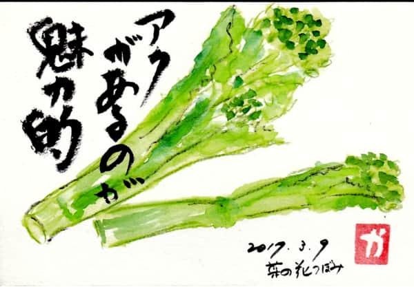 アクがあるのが魅力的〜菜の花のつぼみ〜