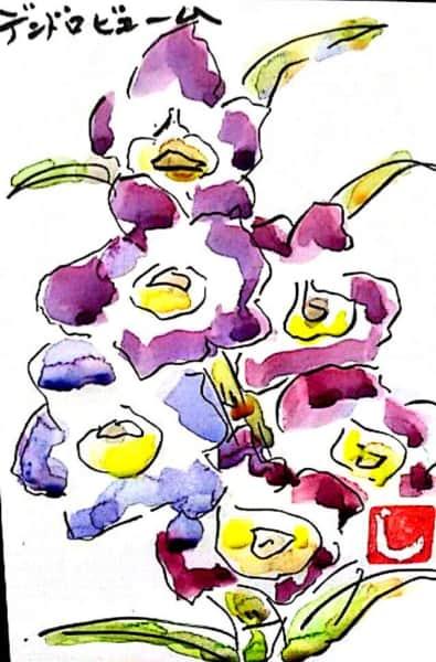 紫のデンドロビューム