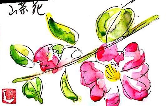 鮮やかな真紅の山茶花