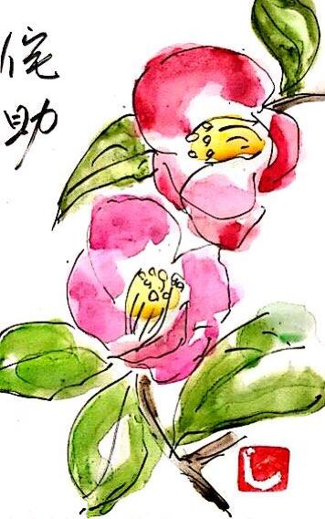 お花をいっぱい書いた日~侘助~